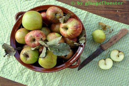 Apfelkraut1